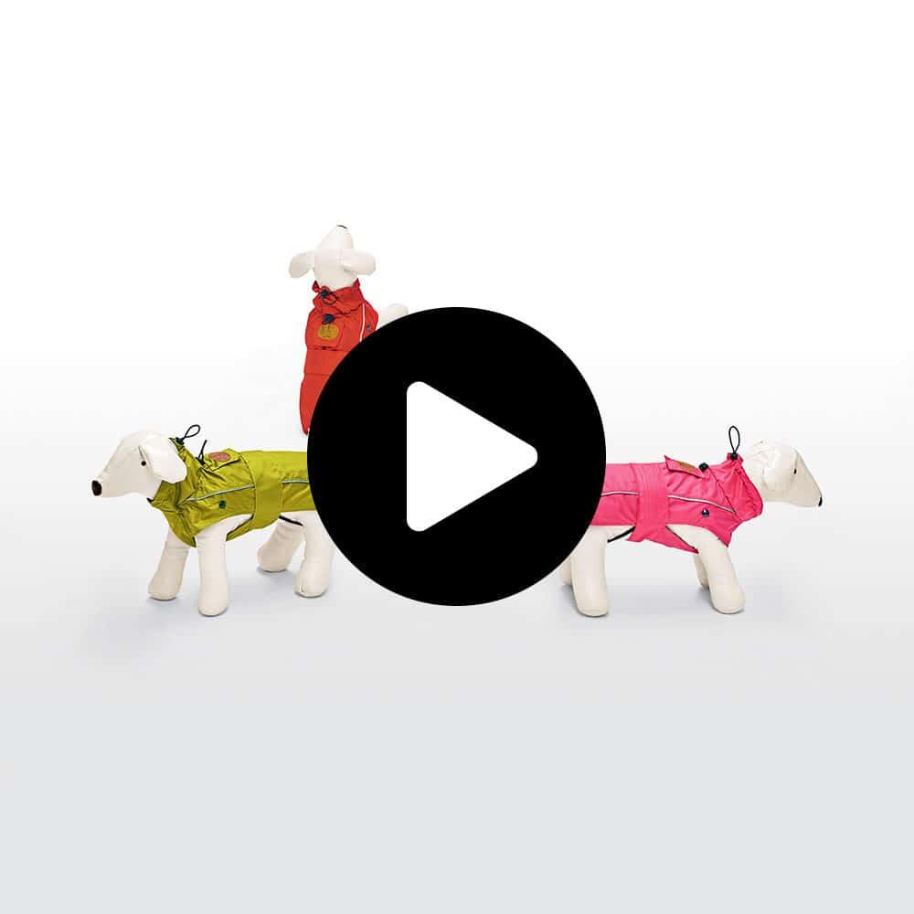 impermeabile per cane oregon plus dog line video